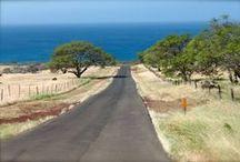 I Miss Hawaii