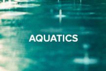 Aquatics / Make a splash in aqua shades and scuba inspired fabrics