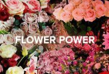Flower Power / by Jimmy Choo
