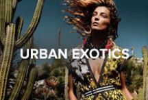 Urban Exotics / Take a walk on the wild side.