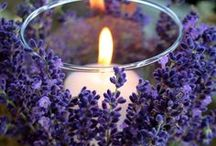 Centerpieces & Floral Arrangements