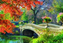 """Garden Dreams / """"A garden is a delight to the eye and solace for the soul"""" ~ Sadi / by Jade Redhawk"""