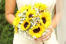 Wedding / by Emily Kent