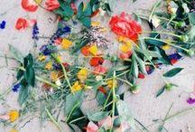 FloraLove / by Fi Chapman