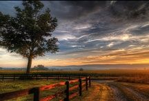 Vistas and Streetscapes / Picture rolling hills and charming country roads; historic farmhouses and magnificent sunsets. Discover hidden treasures on our breathtaking back roads. Explore the remarkable beauty of Loudoun County VA. #loudounviews / by Visit Loudoun
