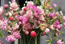 Fleurs du bien