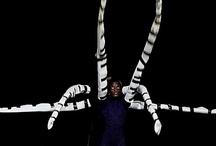 Melody - Mojo Spider