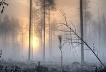 Mist[ery]