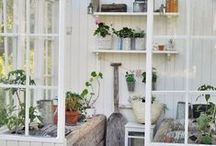 Greenhouses / Greenhouses.  How to create your own greenhouse from the smallest to the largest.  Great DIY ideas.