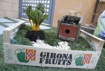 Ideas originales para jardín