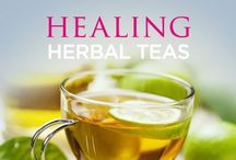 Healthy Teas / Teas for healing and kombucha recipes