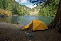 Camping / by Helen Walker