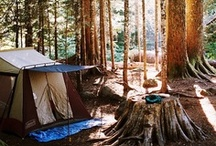 CAMPING / Love To Go GLAMPING!! ...listen can you hear them....wait ...there..the frogs, and crickets have started, was that a coyote in the distance...I can still smell the campfire in the air..now go to sleep we have a big day planned.. / by Gay Riipinen