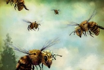 Bees / by Gay Riipinen