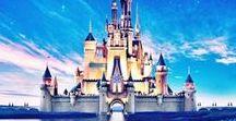 Disney World Info