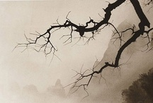 Arte - Oriental / by Paco Castillo