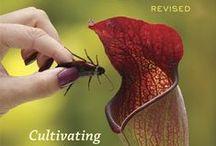 Carnivorous Plants / Carnivorous Plants