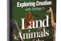 Zoology 3 Activities