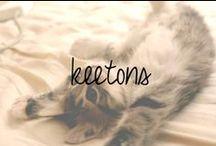 Keetons / by Chandra Robrock