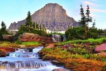 Montana / by Mo Krissy