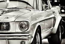 Mustangs / Mustang, Shelby Mustang, Cobra