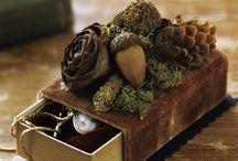 Crafts: Moss, Nests, Birdhouses....