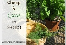 Cheap & Green in 2013