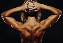 Fitness: Chest and Back