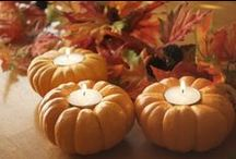 Halloween, Give Thanks and Fall / by Jill Myers