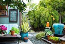 Garden / by Ellen Vesters { Illustrator }