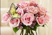 Flowers and Bouquets   Beautiful and Romantic