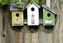 Birdhouses / by Pam Appleman