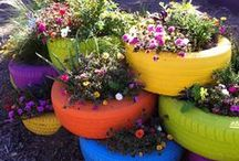 Definite Backyard Ideas / Definite Ideas I am going to do in our backyard / by Sheila Bridegam