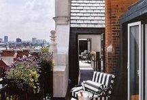 Terrace beauty / by Jacquelyn Aronson Falk