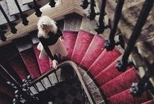 Wacky Staircases / by Chelsey Hyde