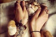 Feline Friends / by Adelaide Guerra