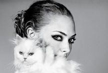 celebrity + cat / by Jenny Meara