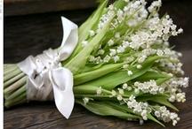 Wedding bouquet / by Bridepop