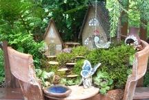 Fairy Garden / by Zonna Fenn