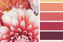 {DIY} Color Inspiration / by Crystal Lewis