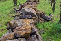 Stone Field and Garden Walls / by David Wahbeh