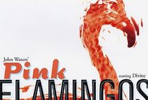 Flamingos...love them! / by Erin Vice
