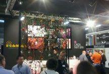 Event| FloraHolland Trade Fair 2013  / B&G de Mooij staat voor het eerst dit jaar op de FloraHolland Trade Fair! Dit is de internationale handelsbeurs. In dit album ontdek je actuele producten van kwekers, veredelaars en handelaren.