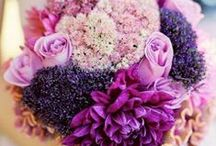 Radiant Orchid Wedding / To celebrate, PANTONE'S color of the year, for 2014.  / by Kleinfeld Bridal