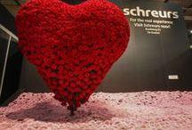 Red, Red, Red! / Rood symboliseert liefde, passie en trouw. Maar welke rode bloemen komen terug in het assortiment van B&G de Mooij?   In dit album zie je verschillende inspiratie artikelen voor de jouw Valentijns assortiment!