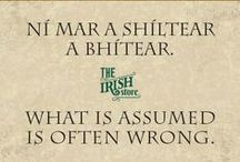 Irish Words & Phrases with Translations / Learn basic Irish words, terms and phrases and the pronunciation with The Irish Store