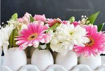 Easter Flower / Met Pasen zijn dit jaar zachte tinten een trend. Zachte tinten zijn gemoedelijk en zorgen voor rust.