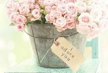 Love Notes / love notes / by Kleinfeld Bridal