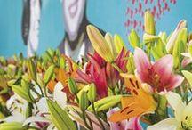 Lilium Inspiration / Juni staat in het teken van #Lelies. Eén van de meest toonaangevende #bloemen in de #wereld. www.bgdemooij.nl