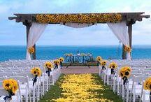 Wedding / Heel veel stellen trouwen in vakantietijd. Niet zo vreemd, want juist dán heb je de allerbeste bloemen die schitteren in heerlijke temperaturen. Dat verhoogt de feestvreugde en geeft een extra dimensie in geur én kleur.